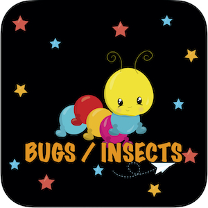 Bugs / Insects